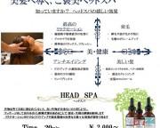 headspa_img